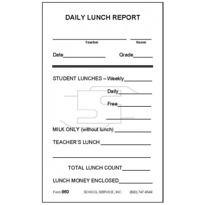 960 - Daily Lunch Report - Meal & Activity