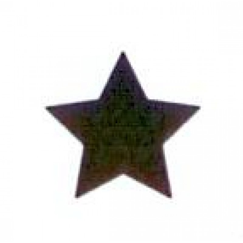 AS7 - Small Star Stamp - Teacher Stamps